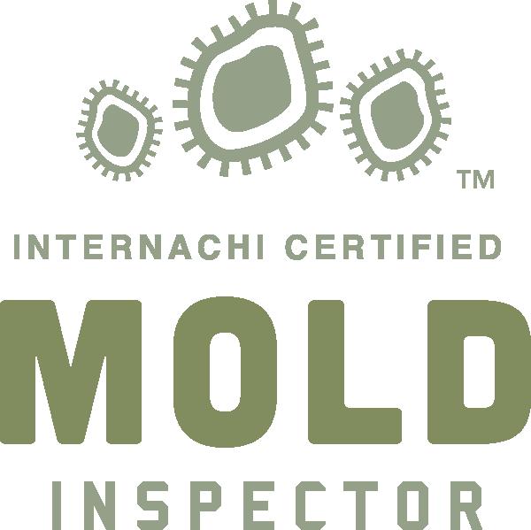 St Louis mold inspection near me
