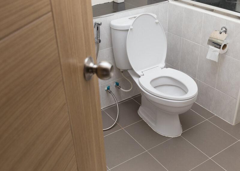 Toilet Inspection St Louis